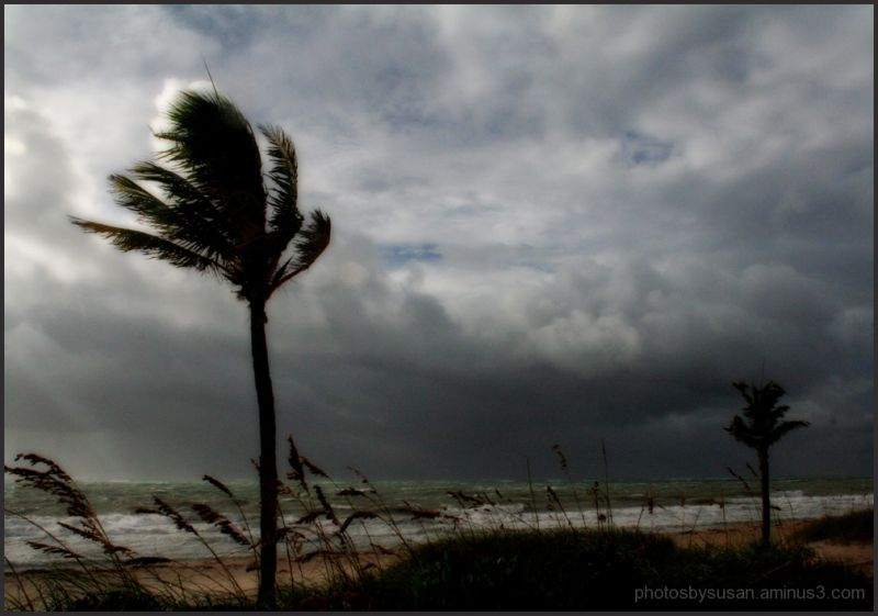 shot of beach during hurricane