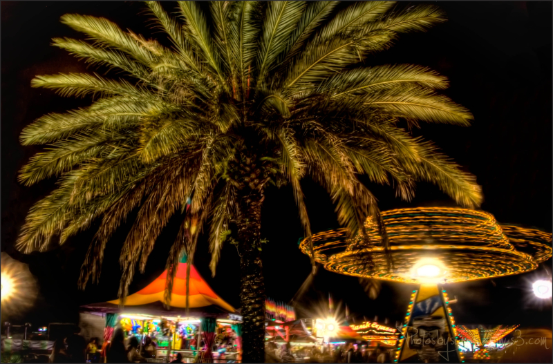 Florida Carnival Nights