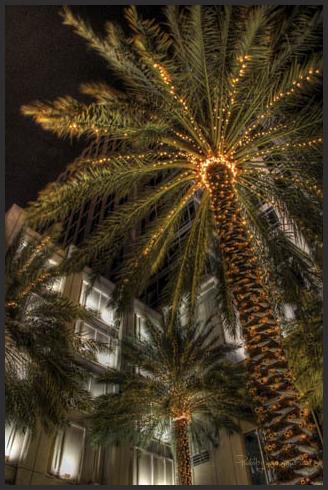 Lights at Night II