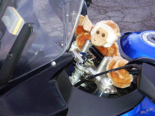 Apprendista motociclista