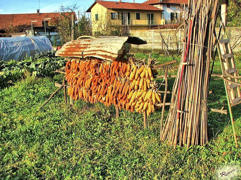 Un angolo di campagna Piemontese