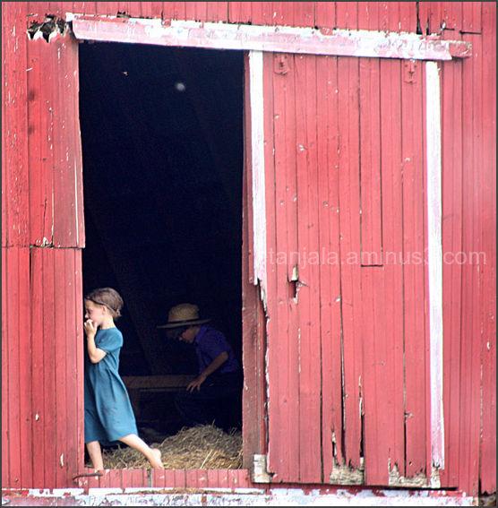 Cross America- Amish community in PA (4)
