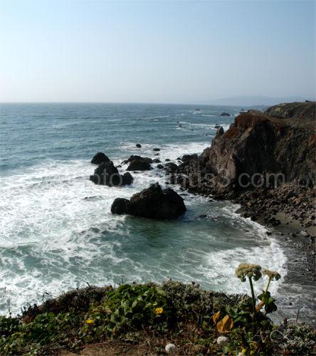 Cliff, ocean, sonoma