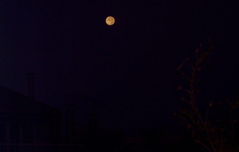 Lluna plena (II)