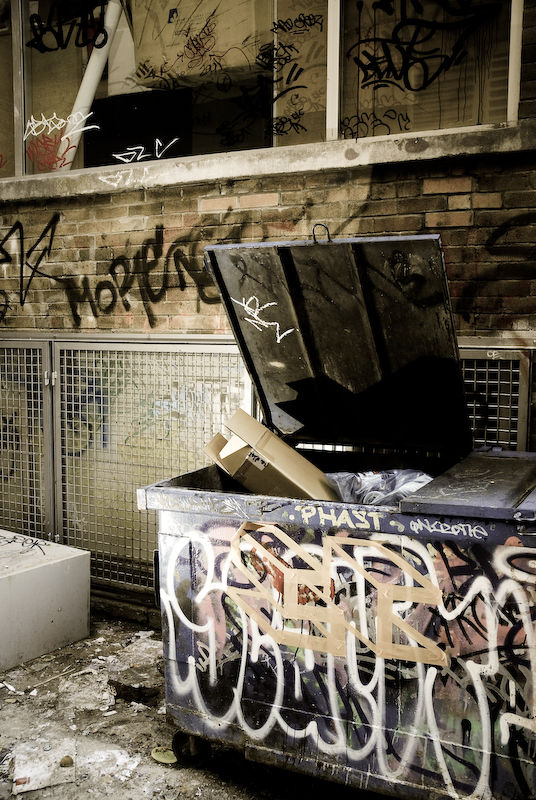 Dumpster with graffiti in an alley.