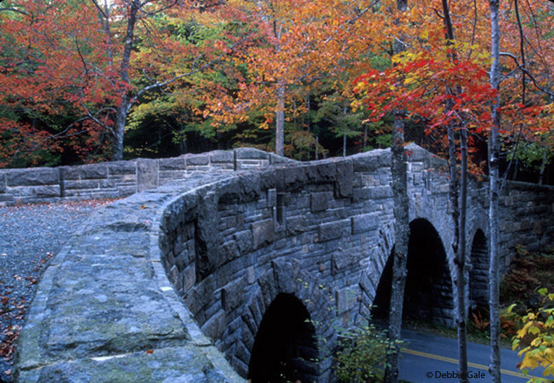Acadia National Park Carriage Bridge and Fall Colo