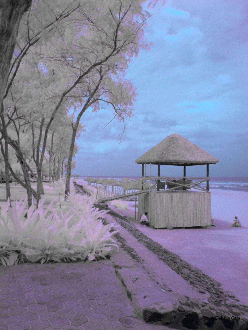 Fisherman's Cove, Chennai in Infrared