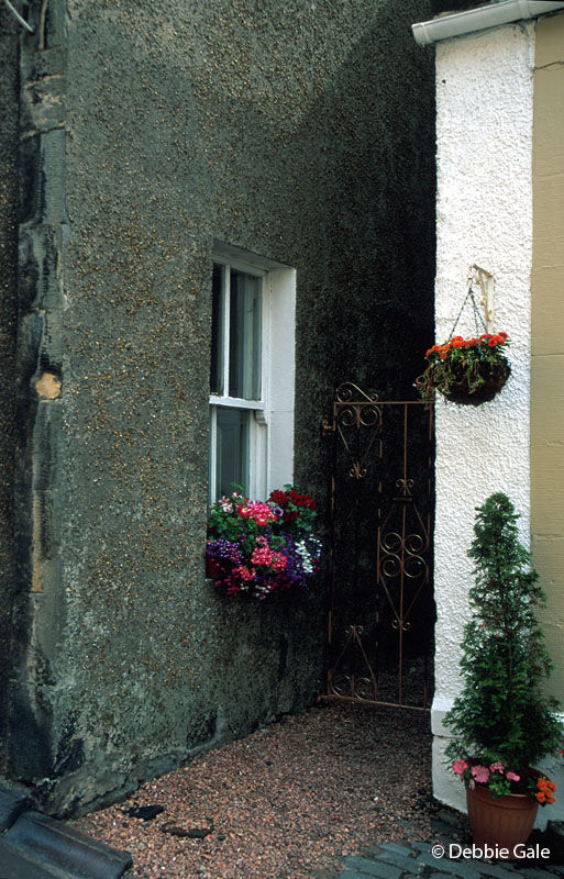 Flowerbox and Gate