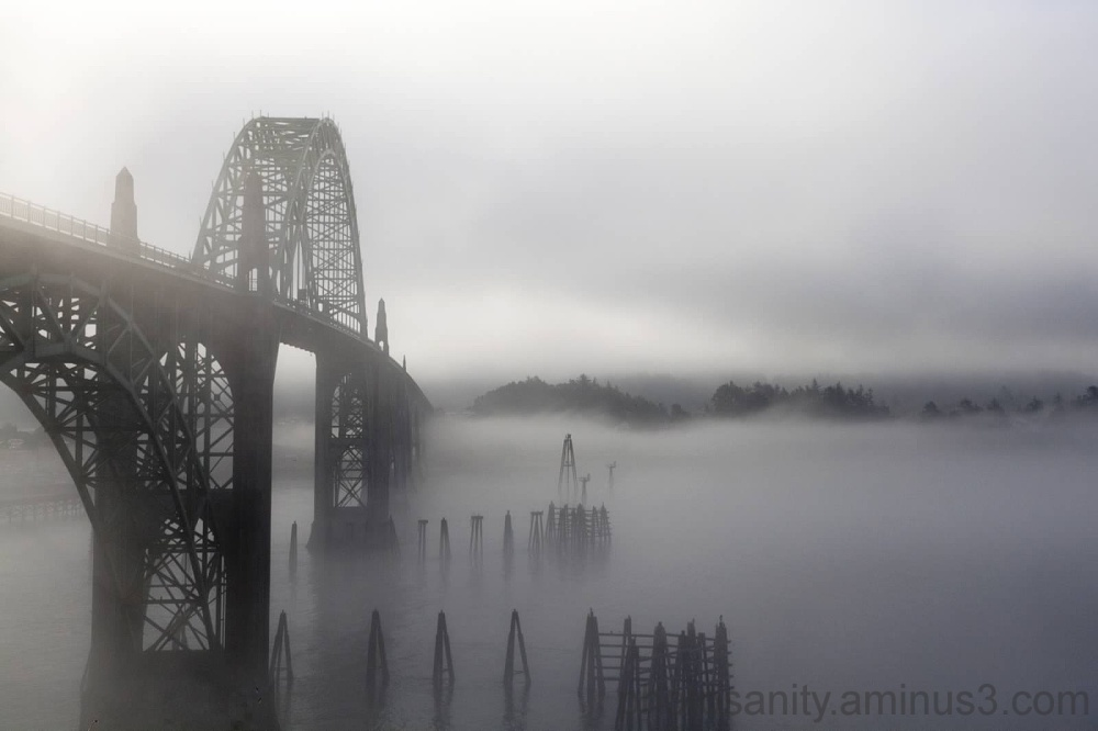 Rising out of the fog