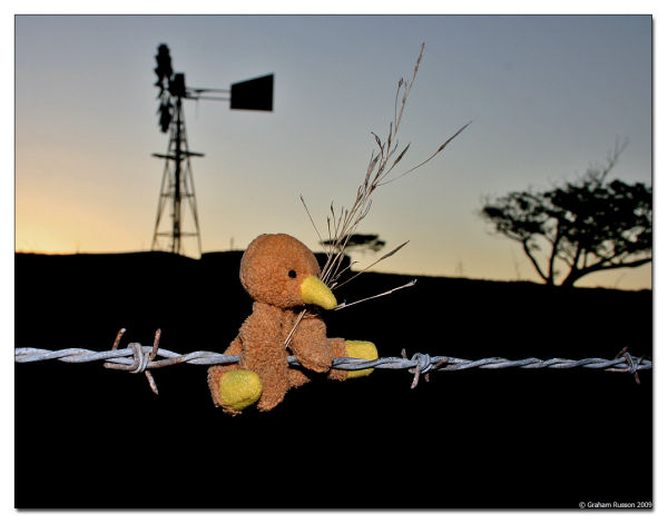 Africa Sunset Windmill