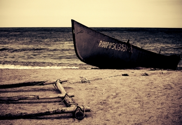 (B)arca lui Noe
