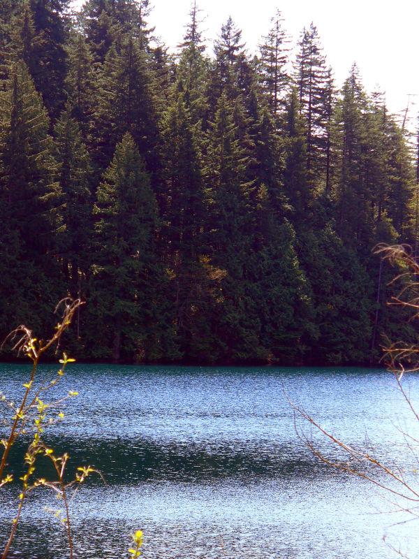 lake british columbia