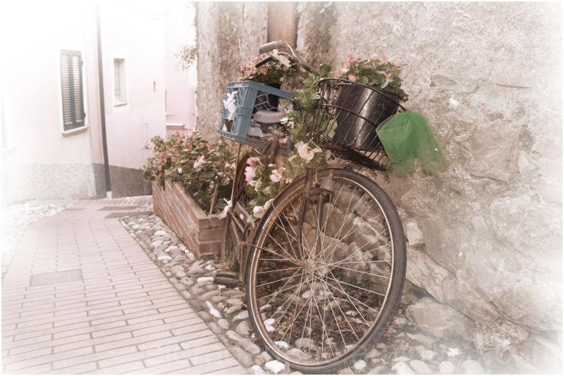 planter bike