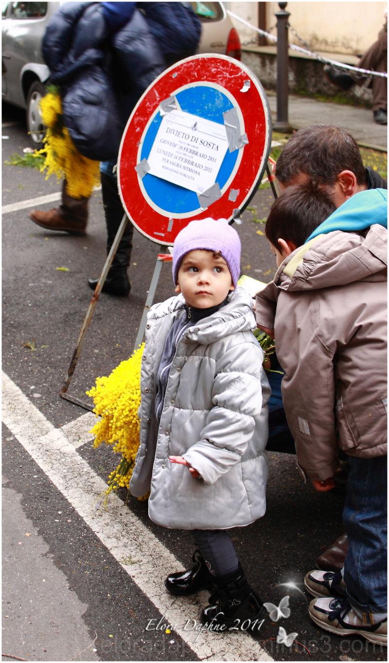 child mimosa