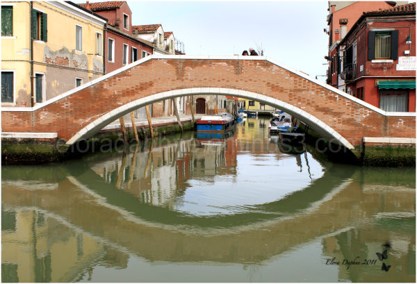 bridge murano