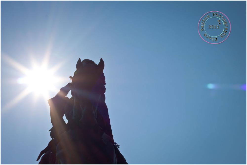 horse statue turin