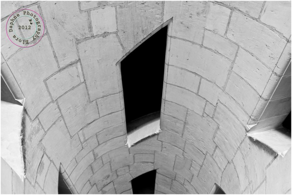 chateau de chambord double helis staircase