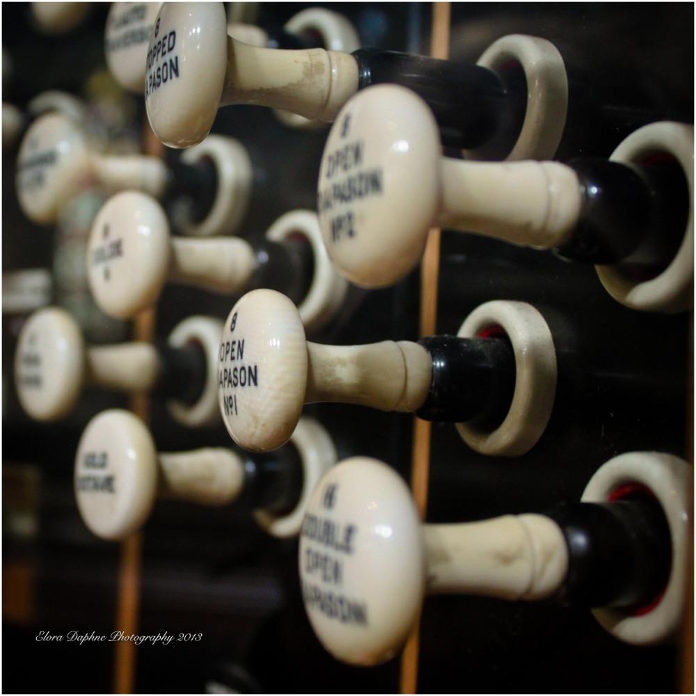 organ knobs
