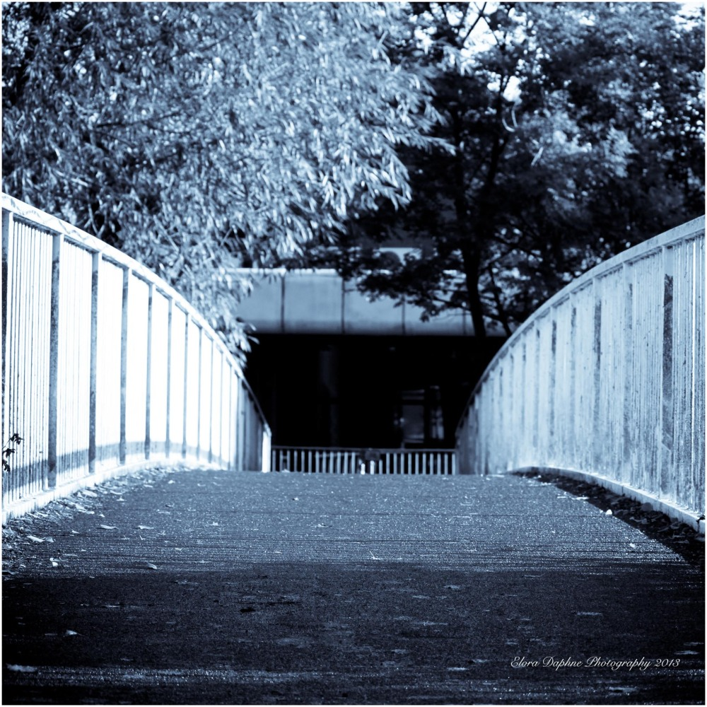 bridge derby riverside walk
