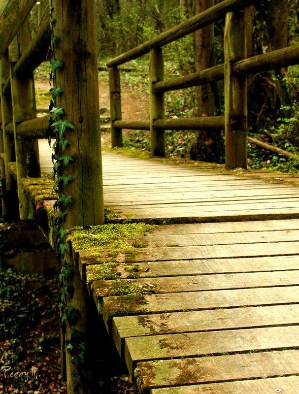Le Pont des Soupirs...