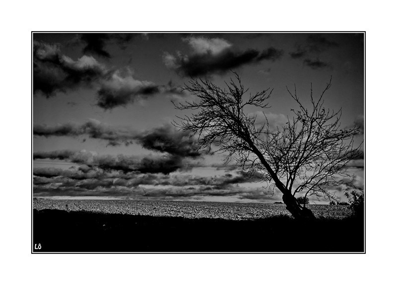 La solitude ...