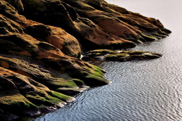 waterline at Lake Ray Roberts