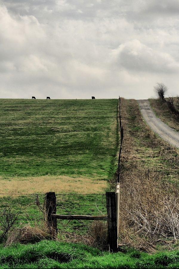 pasture near dorchester texas