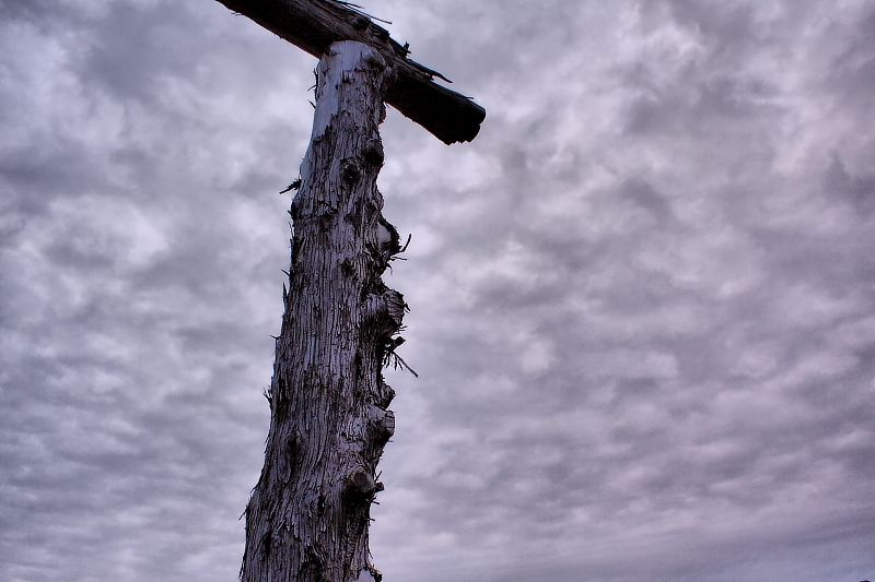 fence post and sky