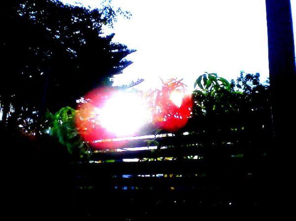 Duplical Sunset