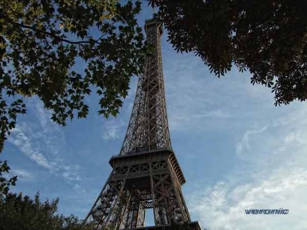 A symbol for us Paris 1*