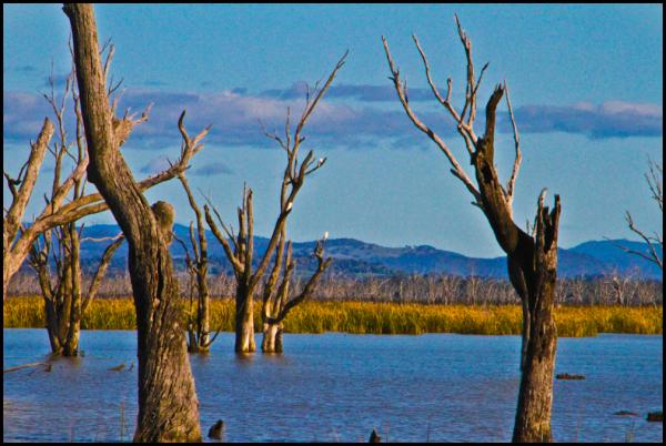 Lake Mokoan