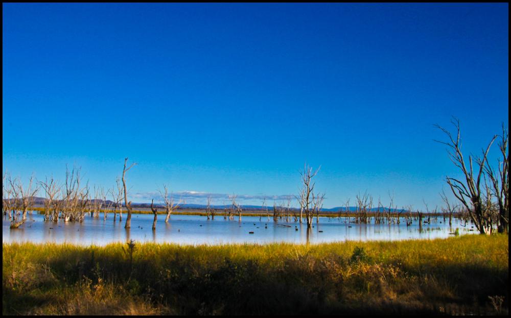Lake Mokoan 2