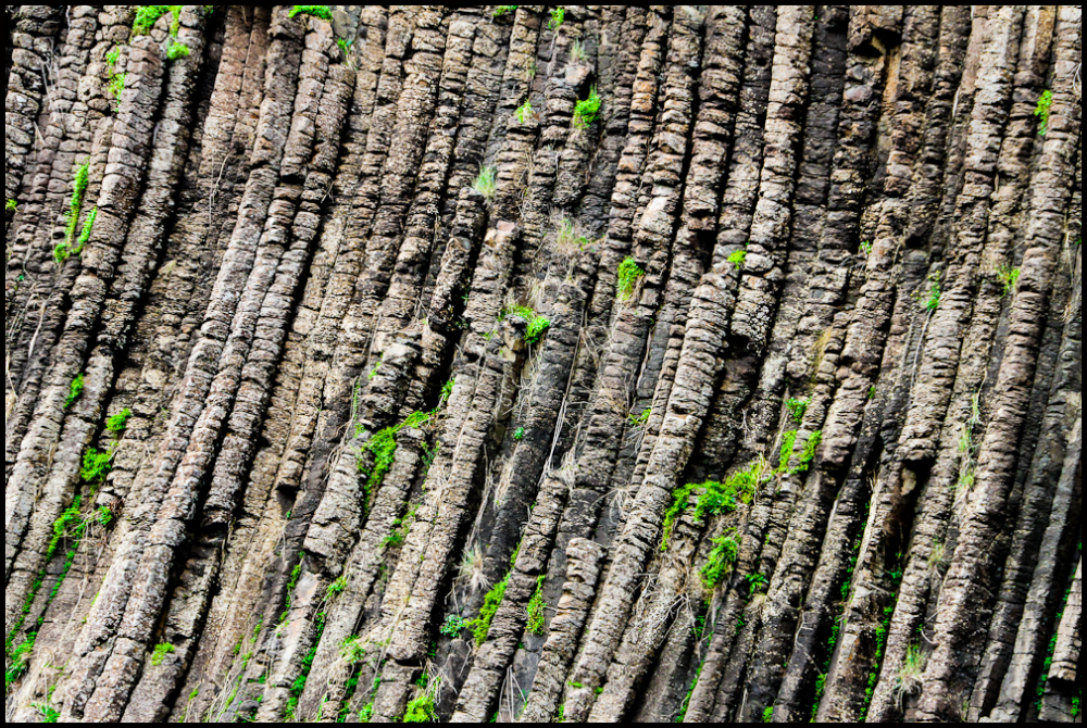The Organ pipes 3