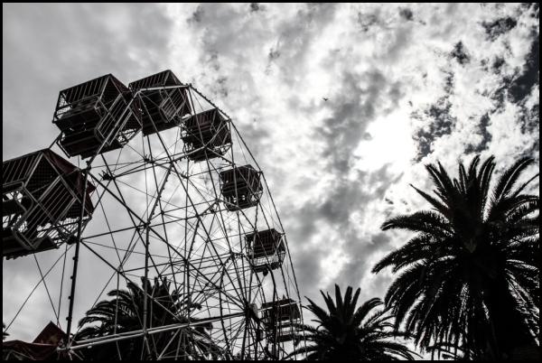 Moomba 2014 Wheel