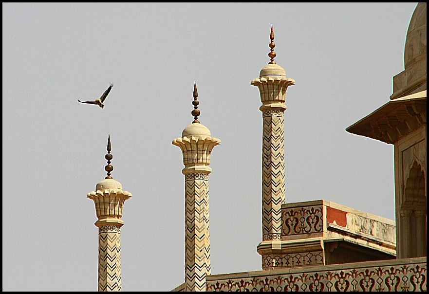 Eagles over the Taj 3