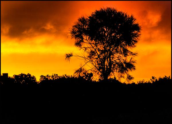 Serious sunset