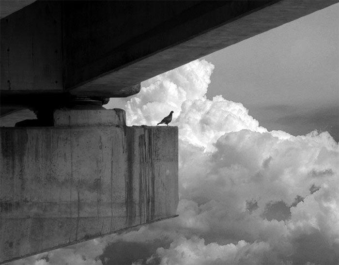Ostruznica bridge