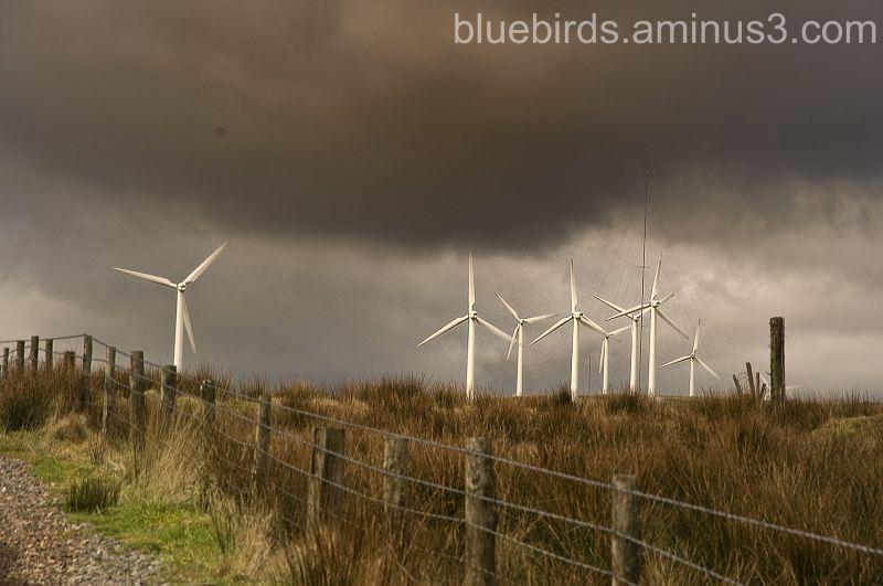 Wind Turbines overlooking LLanharan