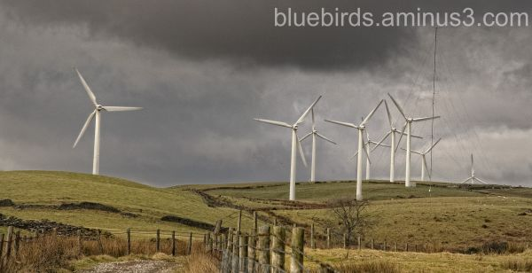 Wind Turbines - you cannot miss them!
