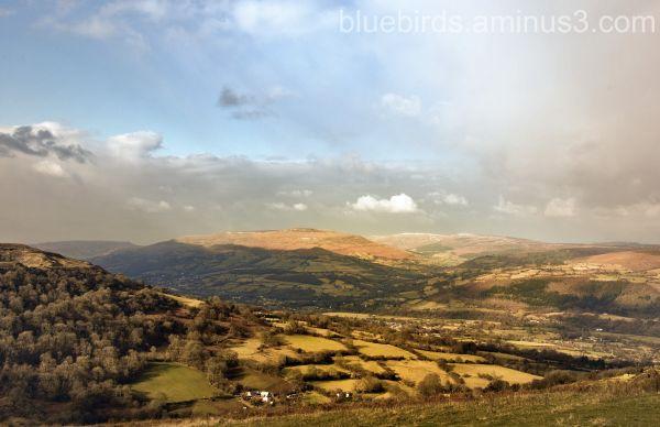 Black Mountains View #3