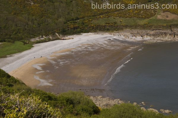 Gower Coastline - Pwelldu bay
