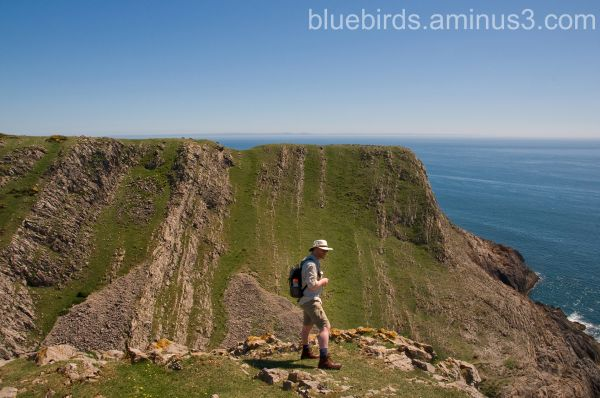 Rhossili View - Bro-in-law #1