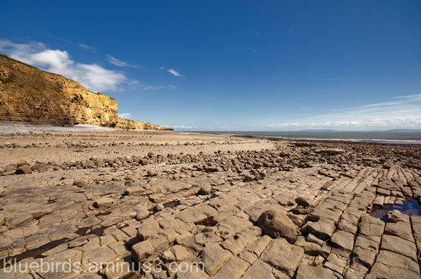 Llantwit Major beach #7