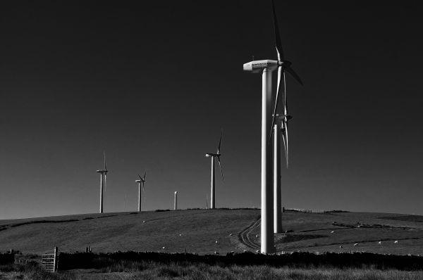 Monochrome Wind Turbines