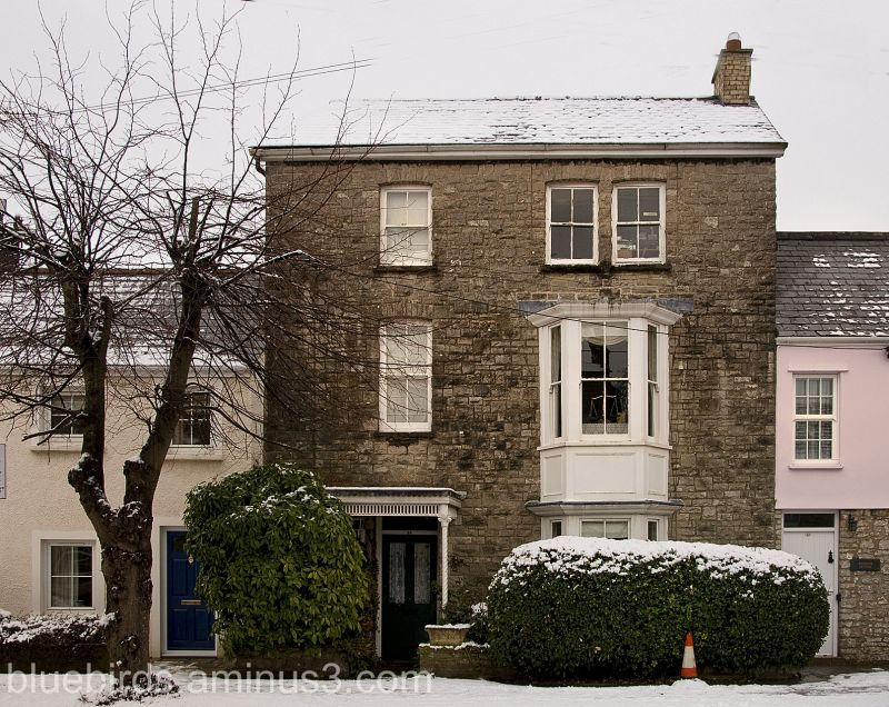 Cowbridge House and Traffic Cone