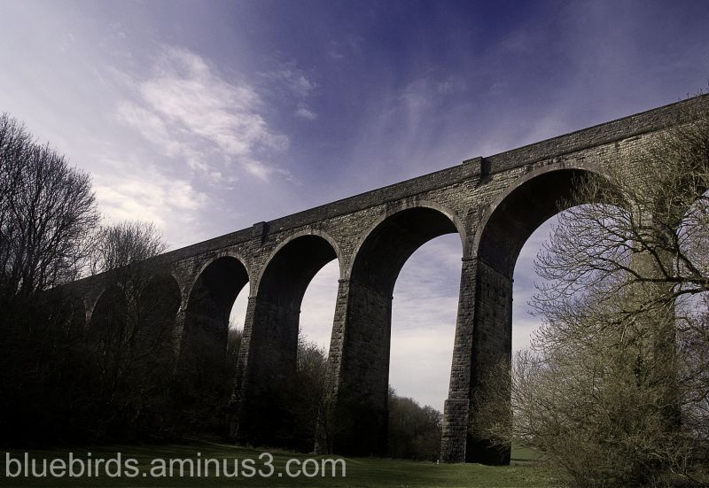 PorthKerry Viaduct - Another View