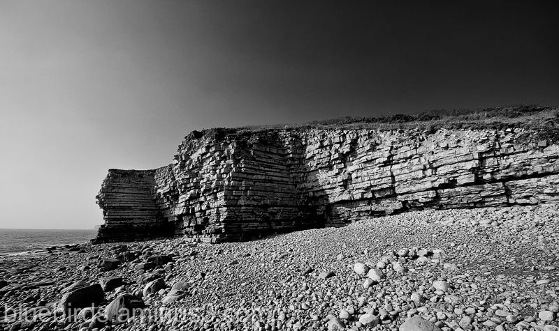 Llantwit Major West Shoreline 4