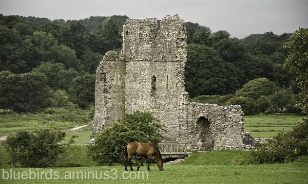 Ogmore Castle country setting