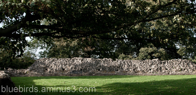 St Quentins Castle - Outer Wall
