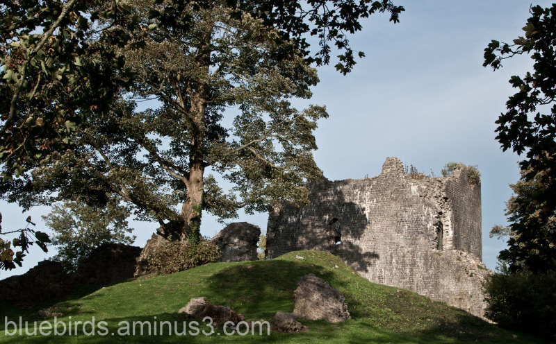 St Quentins Castle  - Inner Ward